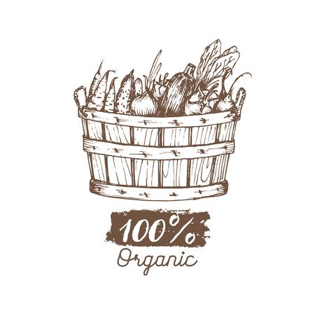 有機野菜のベクトルのロゴ。ファーム エコ製品図。緑と手篭をスケッチしました。農村の収穫のポスター。