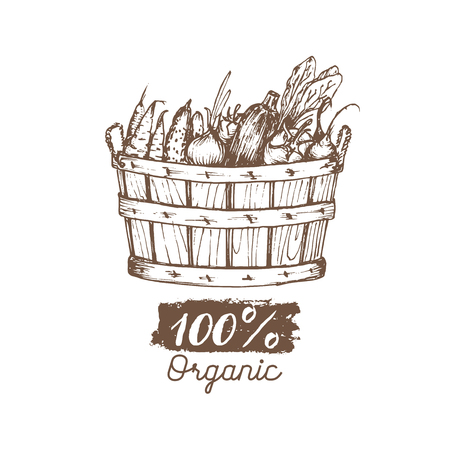 Vector organic vegetables logo. Farm eco products illustration. Hand sketched basket with greens. Rural harvest poster.