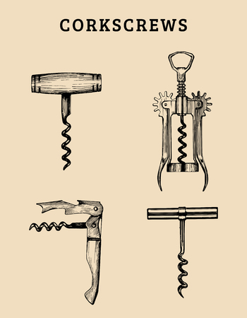 Hand drawn vector corkscrews set. Retro illustrations collection of different spins in sketch style.