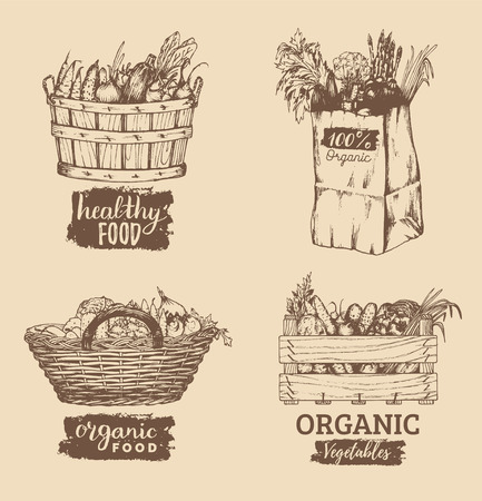 Vector organic vegetables images set. Farm products illustrations. Hand sketched baskets, box and bag with greens. Vettoriali