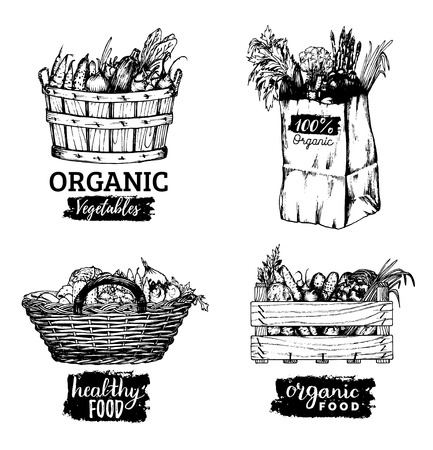 Vector organic vegetables images set. Farm products illustrations. Hand sketched baskets, box and bag with greens. Stock Illustratie