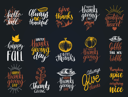 Set of lettering and illustrations for Thanksgiving Day. Vector drawn and handwritten labels of Happy Fall etc.