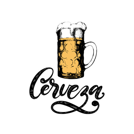 Cerveza, vector hand lettering. Translation from Spanish of word Beer. Hand drawn illustration of glass beer mug.