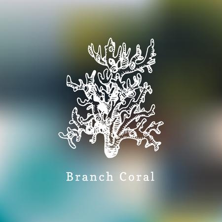 Branch coral vector illustration. Drawing of sea polyp on blurred background. Ilustração