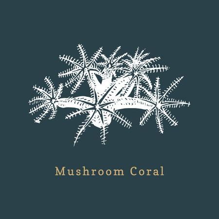 Mushroom coral vector illustration. Drawing of sea polyp on dark background
