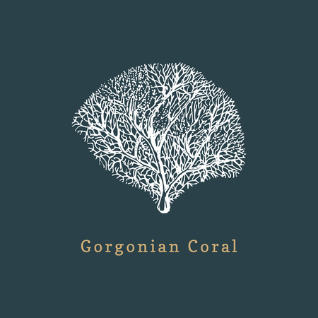 Gorgonian coral vector illustration. Drawing of sea polyp on dark background