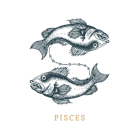 Pisces zodiac symbol, hand drawn in engraving style.