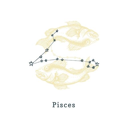 Zodiacal constellation of Pisces of drawn symbol in engraving style.