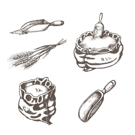 Graphic illustrations of miller stuff in vector. Hand drawn set of farm goods in engraving style Ilustrace