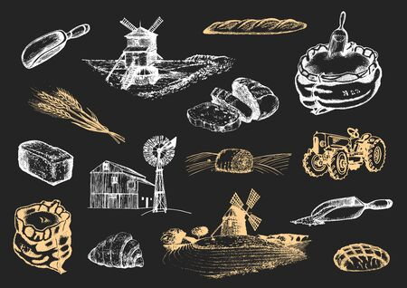 Graphic illustrations of miller stuff in vector. Hand drawn set of bakery and pastry goods in engraving style. Sketches collection of rural life and farm environment.