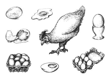 Graphic illustrations of poultry farm goods in vector. Hand drawn set of hennery production in engraving style. Illusztráció