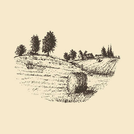 Vector sketch of rural landscape with mowed field.