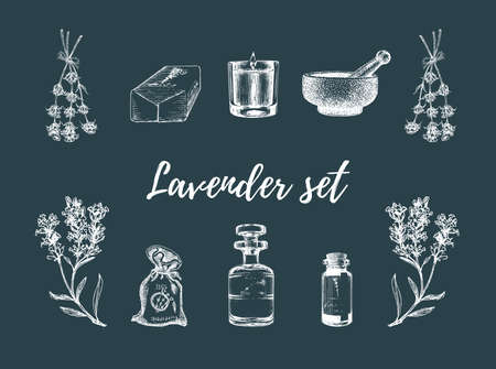 Lavender sketches set. Drawn images in vector.