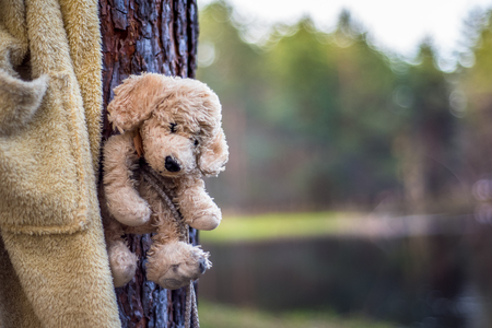 Lost old toy bear alone in the forest Stock Photo