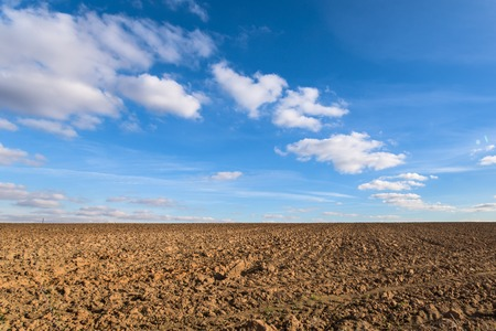 Plowed agricultural farm field pattern and perfect sky Standard-Bild