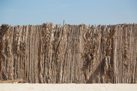 Palm leaves fence in the sand