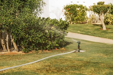 automatic lawn irrigation system in the park. sprinkling the grass and plants Stockfoto