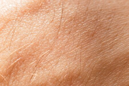 Close-up view of human skin with hair. Bodypositive