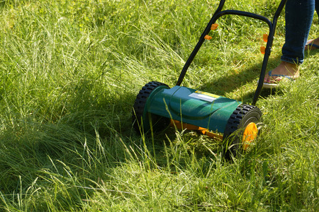 Work in the garden. Mowing grass reel mower