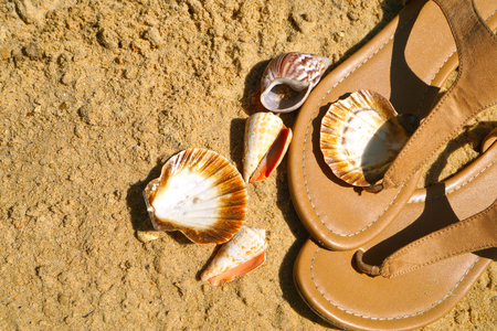 Holiday memories. Beach, summer womens footwear and shells gathered on the shore.