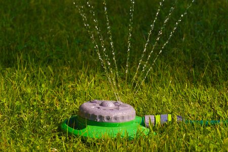 Evening lawn irrigation. A simple and multi-functional garden sprinkler.