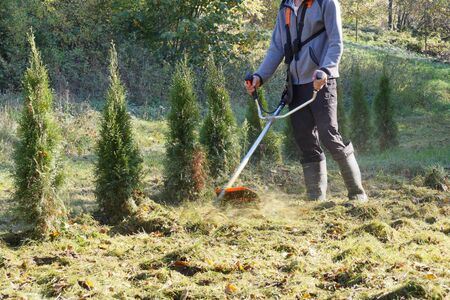Autumn gardening. Cutting excessively overgrown grass with a brush cutter.