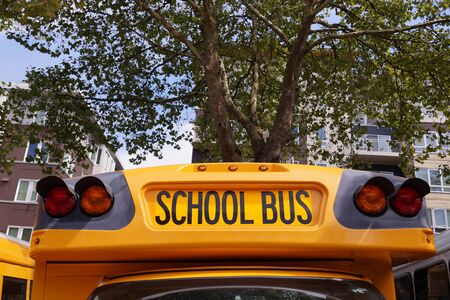 American school bus. One of the most characteristic cars in the world.