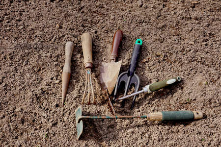 Preparation for work in the home garden. Used garden tools.