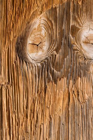 Grunge rustic wooded abstract background Stock Photo - 3339263