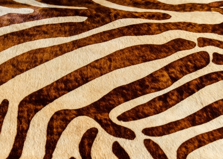 smooth: A closeup of painted cowhide Stock Photo