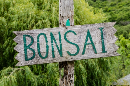 Rustic old wooden Bonsai sign  Stock Photo