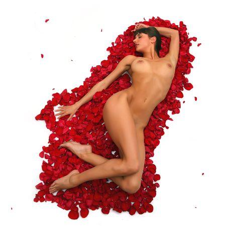 joven desnudo: Harmonous joven bella mujer desnuda establece en los p�talos de rosas, aisladas sobre fondo blanco, por favor vea algunos de mis otras partes de un cuerpo de im�genes