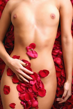 Part of the naked beautiful suntanned female body in petals of scarlet roses photo