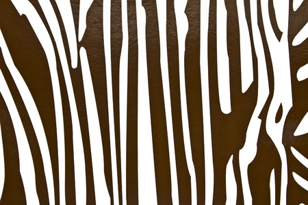 coloring of a zebra