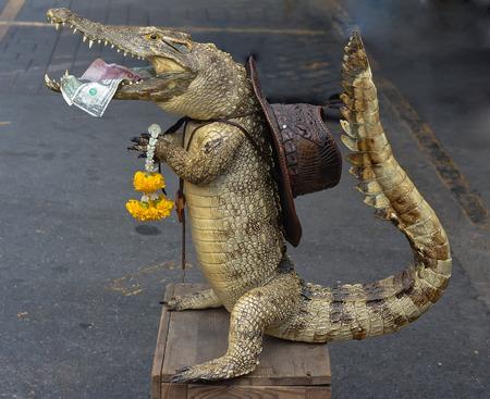 stuffed crocodile collects money