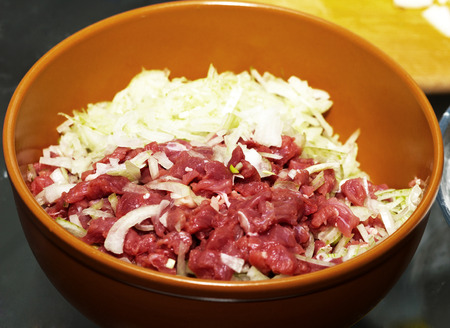 meat diet: Chopped beef steak and onions Stock Photo