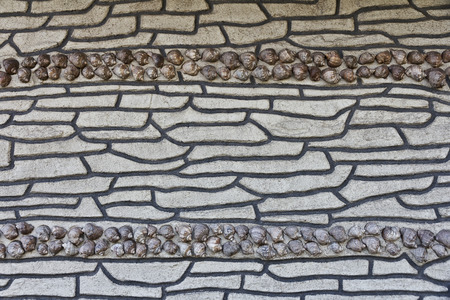 Wall lined with shells, background texture