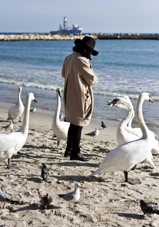 Woman feeding swans on the beach