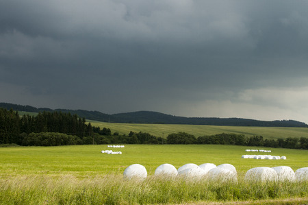 Sunny meadow with silage bags and with dark sky in background
