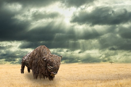 Iron buffalo made of iron scrap walking in dry prairie. Open plain landscape with Amercian bison. Rain commming to grassland. Surrealistic scenery.