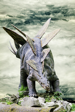 Stegosaurus standing on rock with dramatic sky in background