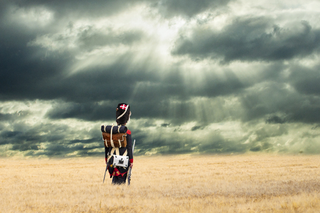 French grenadier watching napoleonic soldiers walking into countryside with stormy clouds.