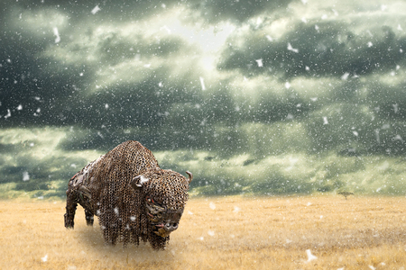 Iron buffalo made of iron scrap walking in dry prairie with falling snow. Open plain landscape with Amercian bison. Rain commming to grassland. Surrealistic scenery