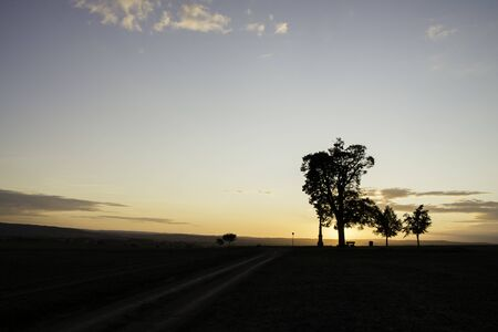 Tree silhouette in sunset with a wayside cross with field and road. Calvary in landscape. Olomouc Czech Republic 免版税图像