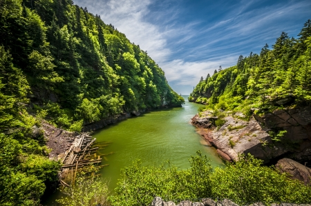 Point Wolf river located in Point Wolf region in New Brunswick Canada