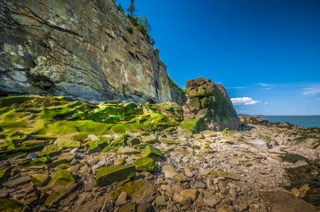 enrage: Eroded cliff and beach located in Cape Enrage New Brunswick Canada Stock Photo