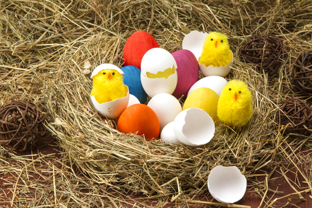 Easter colored eggs in the hay. Little newborn chick Stock Photo