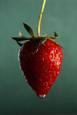 fresh red strawberries on a green background closeup