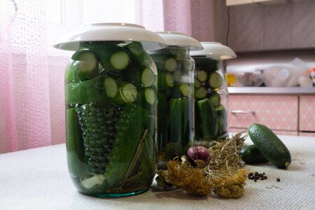 home canning homemade canned cucumbers salted harvesting vegetables for the winter