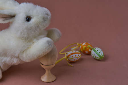 Little white rabbit in the surround with different color of ester eggs.